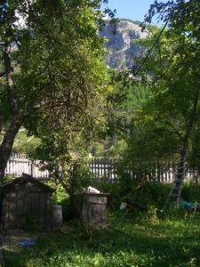Backyard. House in Valbona.